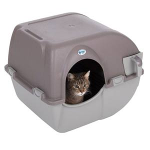 Bandeja gato