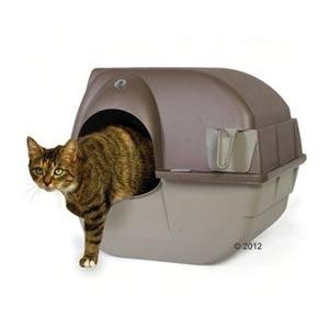 Arenero gato cubierto