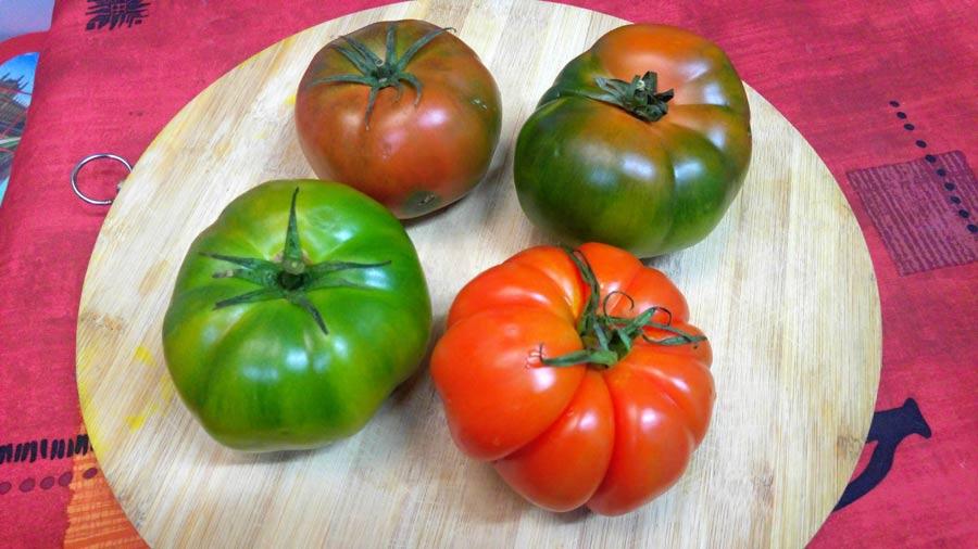 como preparar tomates rellenos