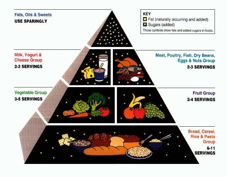 Pirámide alimenticia 1992